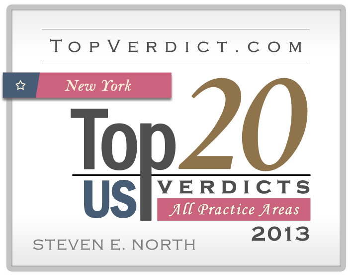 Top Verdicts 2013